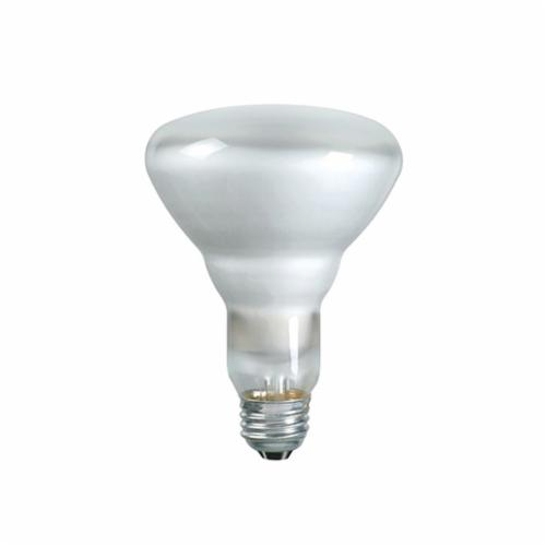 Philips Lighting 65BR30/FL55 120V 12/1